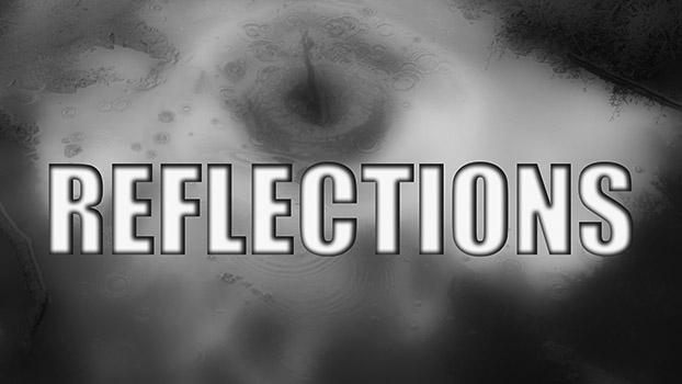 FI_REFLECTIONS